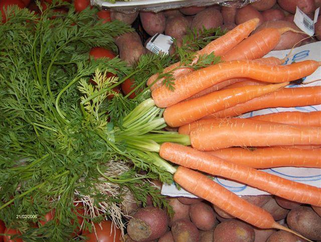 Diccionario Gastronomico Ficha De Cocina De Zanahoria Chef Uri Significado de 🥕 zanahoria emoji. cocina de zanahoria chef uri